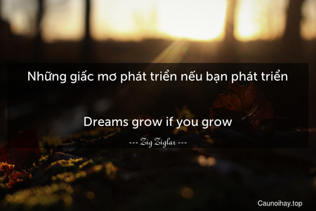 Những giấc mơ phát triển nếu bạn phát triển. - Dreams grow if you grow.