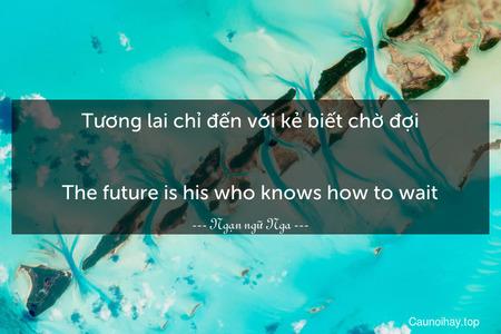 Tương lai chỉ đến với kẻ biết chờ đợi. - The future is his who knows how to wait.
