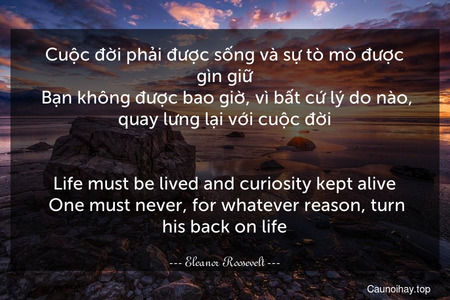 Cuộc đời phải được sống và sự tò mò được gìn giữ. Bạn không được bao giờ, vì bất cứ lý do nào, quay lưng lại với cuộc đời. - Life must be lived and curiosity kept alive. One must never, for whatever reason, turn his back on life.