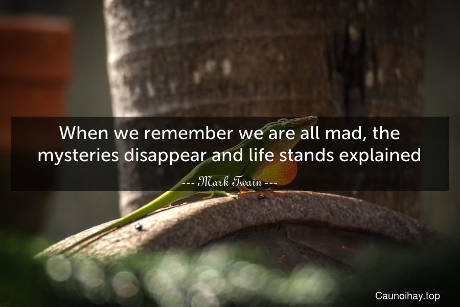 When we remember we are all mad, the mysteries disappear and life stands explained.