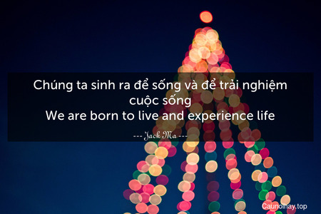 Chúng ta sinh ra để sống và để trải nghiệm cuộc sống. We are born to live and experience life.