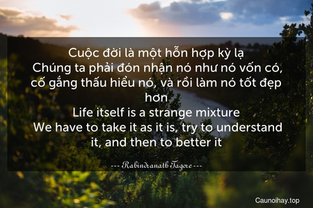 Cuộc đời là một hỗn hợp kỳ lạ. Chúng ta phải đón nhận nó như nó vốn có, cố gắng thấu hiểu nó, và rồi làm nó tốt đẹp hơn. Life itself is a strange mixture. We have to take it as it is, try to understand it, and then to better it.