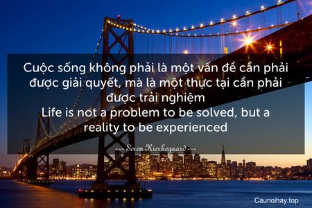 Cuộc sống không phải là một vấn đề cần phải được giải quyết, mà là một thực tại cần phải được trải nghiệm. Life is not a problem to be solved, but a reality to be experienced.