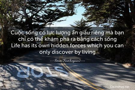 Cuộc sống có lực lượng ẩn giấu riêng mà bạn chỉ có thể khám phá ra bằng cách sống. Life has its own hidden forces which you can only discover by living.