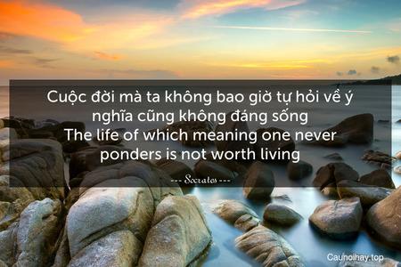 Cuộc đời mà ta không bao giờ tự hỏi về ý nghĩa cũng không đáng sống. The life of which meaning one never ponders is not worth living.