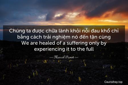Chúng ta được chữa lành khỏi nỗi đau khổ chỉ bằng cách trải nghiệm nó đến tận cùng. We are healed of a suffering only by experiencing it to the full.