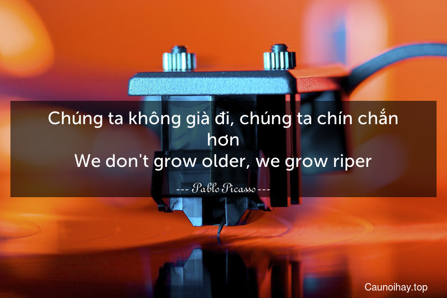 Chúng ta không già đi, chúng ta chín chắn hơn. We don't grow older, we grow riper.