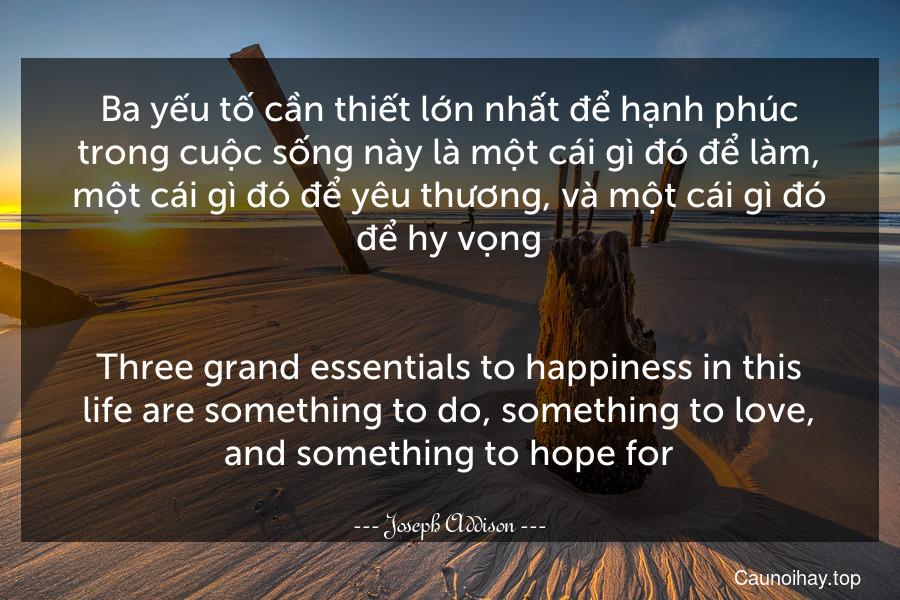 Ba yếu tố cần thiết lớn nhất để hạnh phúc trong cuộc sống này là một cái gì đó để làm, một cái gì đó để yêu thương, và một cái gì đó để hy vọng. - Three grand essentials to happiness in this life are something to do, something to love, and something to hope for.