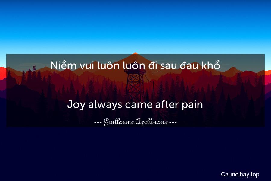 Niềm vui luôn luôn đi sau đau khổ. - Joy always came after pain.