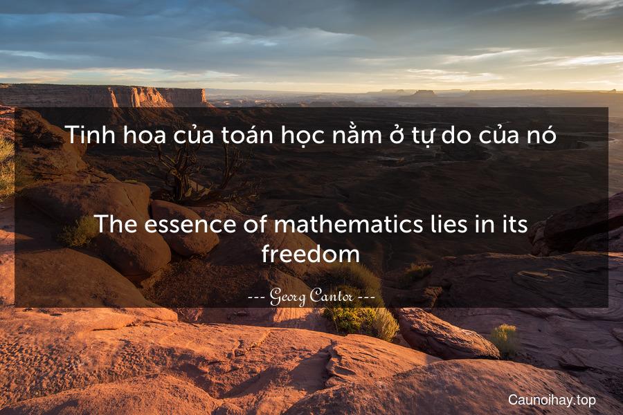 Tinh hoa của toán học nằm ở tự do của nó. - The essence of mathematics lies in its freedom.