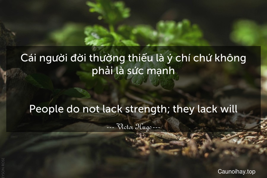 Cái người đời thường thiếu là ý chí chứ không phải là sức mạnh...