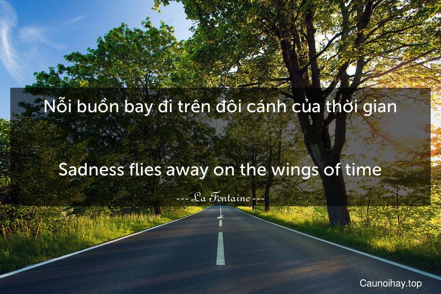 Nỗi buồn bay đi trên đôi cánh của thời gian. - Sadness flies away on the wings of time.