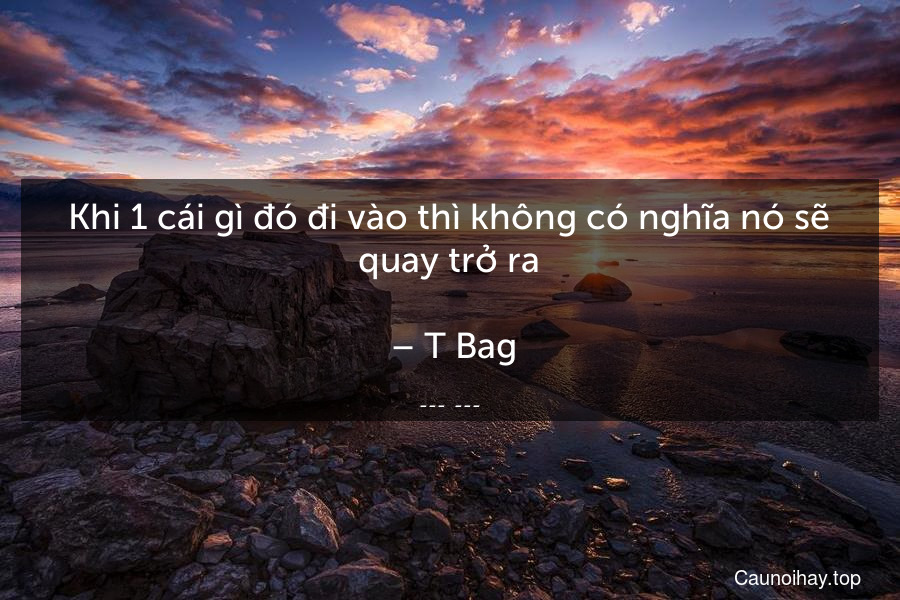 Khi 1 cái gì đó đi vào thì không có nghĩa nó sẽ quay trở ra.  – T-Bag